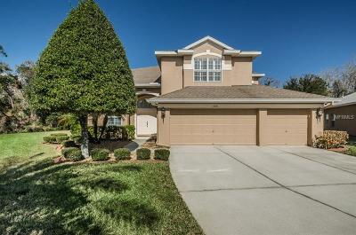 New Port Richey Single Family Home For Sale: 11041 Ragsdale Court