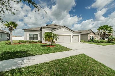 Tampa Single Family Home For Sale: 4702 Woods Landing Lane