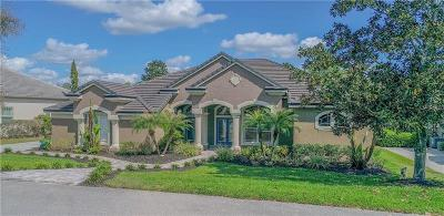 Hernando County, Hillsborough County, Pasco County, Pinellas County Single Family Home For Sale: 12430 Lake Jovita Boulevard