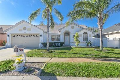 Tarpon Springs Single Family Home For Sale: 309 Wood Dove Avenue