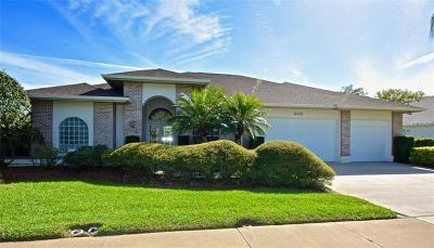 Palm Harbor Single Family Home For Sale: 1643 McAuliffe Lane