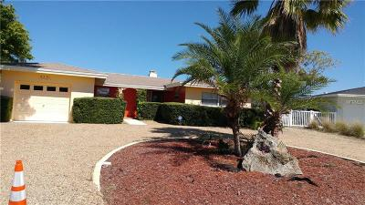 St Pete Beach Single Family Home For Sale: 4381 Poinsettia Drive