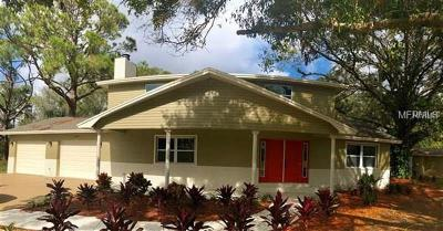 Tampa Single Family Home For Sale: 12805 Horseshoe Road