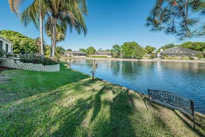 Palm Harbor Single Family Home For Sale: 3216 Harvest Moon Drive