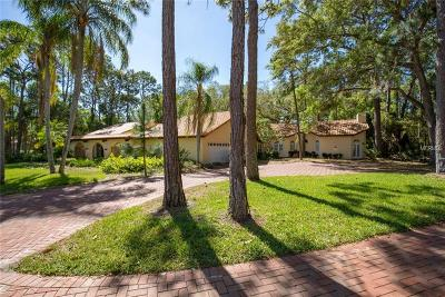 Clearwater Single Family Home For Sale: 2401 Margolin Lane