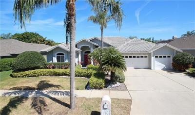 Seminole Single Family Home For Sale: 10679 Park Place Drive