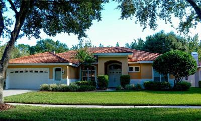 Tampa Single Family Home For Sale: 9325 Cypress Bend Drive