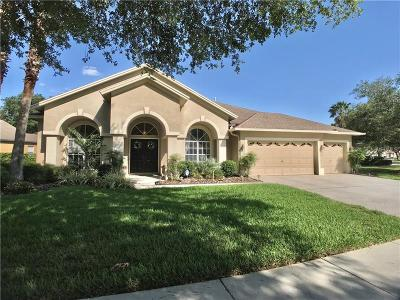 Hernando County, Hillsborough County, Pasco County, Pinellas County Single Family Home For Sale: 4716 Mirabella Place