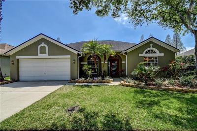 Hernando County, Hillsborough County, Pasco County, Pinellas County Single Family Home For Sale: 10726 Ayrshire Drive