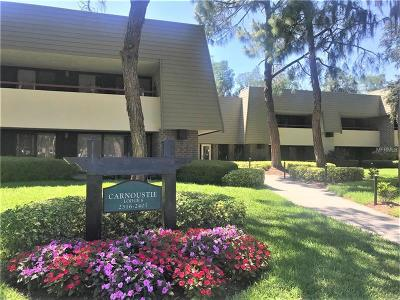 Palm Harbor Condo For Sale: 36750 Us Highway 19 Highway N #2393