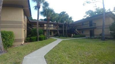 Clearwater`, Clearwater, Cleasrwater Condo For Sale: 2666 Sabal Springs Circle #204