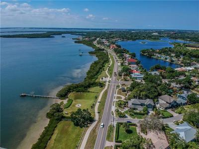Safety Harbor Single Family Home For Sale: 605 S Bayshore Boulevard