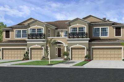 Tampa, Clearwater, Largo, Seminole, St Petersburg, St. Petersburg, Tierra Verde Rental For Rent: 11524 Crowned Sparrow Lane #39/6