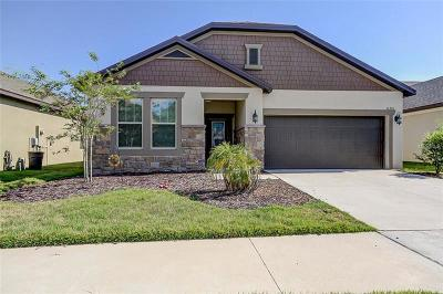 Riverview Single Family Home For Sale: 11351 American Holly Drive