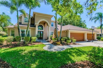 Palm Harbor Single Family Home For Sale: 4119 Presidents Boulevard
