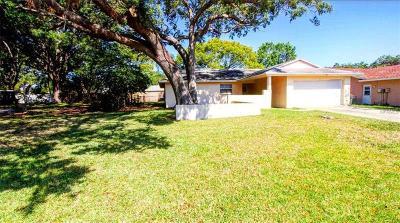 Dunedin Single Family Home For Sale: 1280 Amberlea Drive E