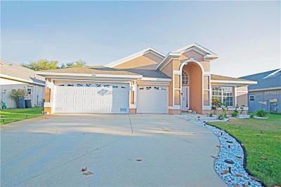 Tarpon Springs Single Family Home For Sale: 1236 Salt Lake Drive