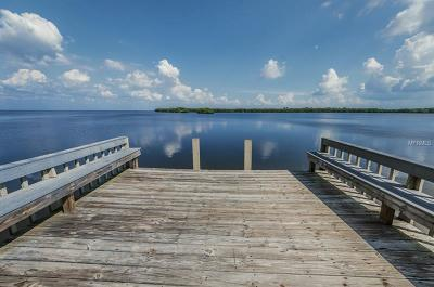 Clearwater Condo For Sale: 1111 N Bayshore Boulevard #B-10