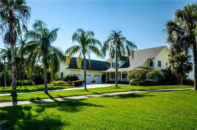 Palm Harbor Single Family Home For Sale: 363 Oceanview Avenue