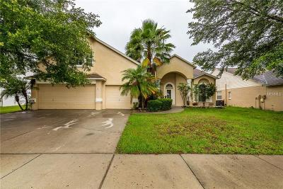 Riverview Single Family Home For Sale: 9718 Mary Robin Drive