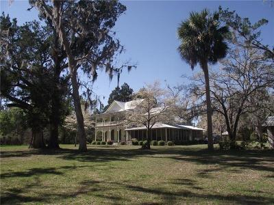 Levy County Single Family Home For Sale: 6251 SW State Road 24