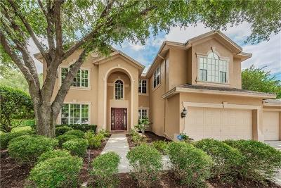 Palm Harbor Single Family Home For Sale: 4068 Ligustrum Drive