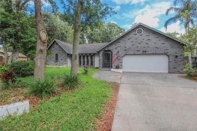 Palm Harbor Single Family Home For Sale: 2853 Lake Valencia Boulevard E