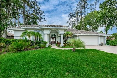 Oldsmar Single Family Home For Sale: 5036 Kilkenney Court
