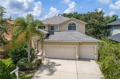 Oldsmar Single Family Home For Sale: 1732 Split Fork Drive