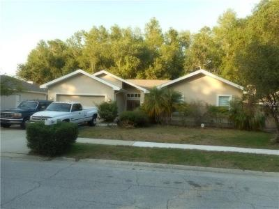 Hernando County, Hillsborough County, Pasco County, Pinellas County Single Family Home For Sale: 901 NE Centerwood Drive