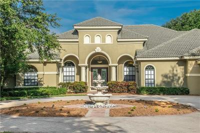 Highlands Of Innisbrook Single Family Home For Sale: 1365 Playmoor Drive
