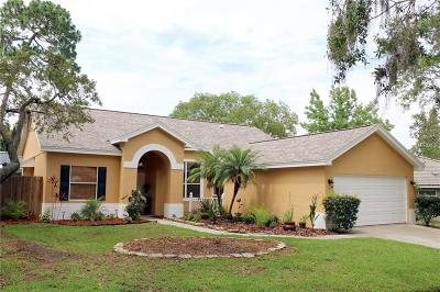 Tarpon Springs Single Family Home For Sale: 1065 Clippers Way