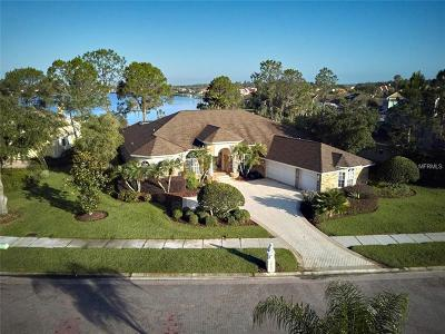 Tampa Single Family Home For Sale: 10503 Cory Lake Drive