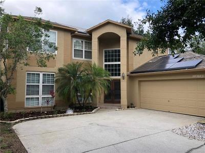 Palm Harbor Single Family Home For Sale: 2095 Otter Way