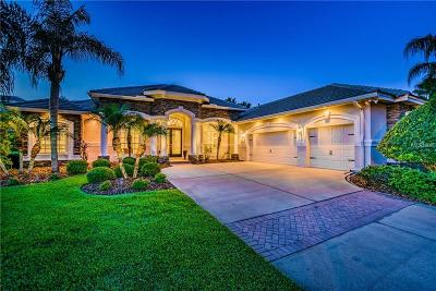 Tampa Single Family Home For Sale: 9912 Tree Tops Lake Road