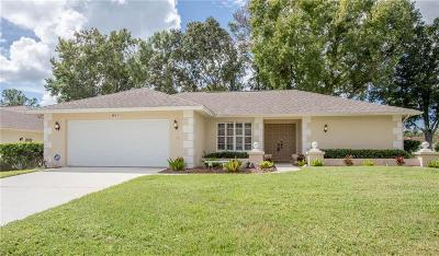 Palm Harbor Single Family Home For Sale: 956 Gillespie Drive