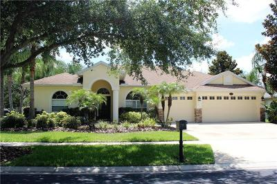 Lutz FL Single Family Home For Sale: $419,900