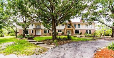 Palm Harbor Single Family Home For Sale: 970 Pine Hill Road