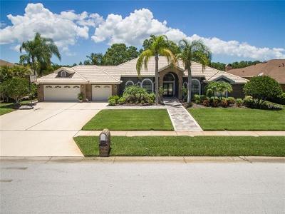 Palm Harbor Single Family Home For Sale: 1910 Lago Vista Boulevard