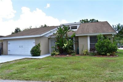 Tampa FL Single Family Home For Sale: $250,000
