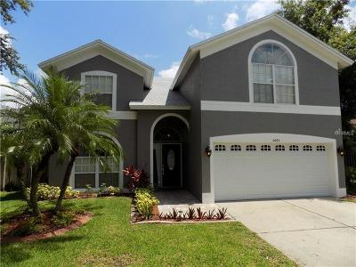 Tampa Single Family Home For Sale: 5643 Paddock Trail Drive