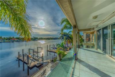 Tampa Single Family Home For Sale: 1041 Royal Pass Road