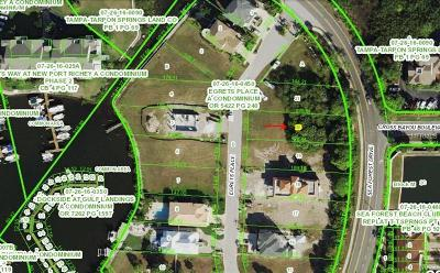 New Port Richey FL Residential Lots & Land For Sale: $49,900