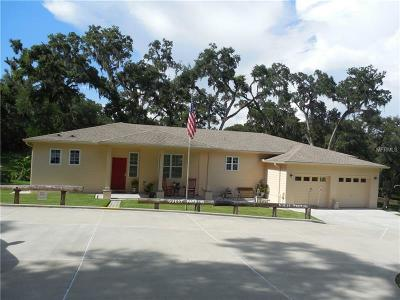 Brooksville Single Family Home For Sale: 11205 Buck Hollow Road