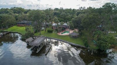 Tarpon Springs Multi Family Home For Sale: 301 Lakeview Drive