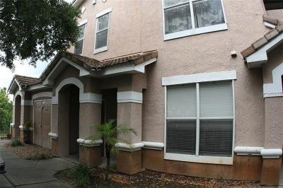 Tampa, Clearwater, Largo, Seminole, St Petersburg, St. Petersburg, Tierra Verde Rental For Rent: 17926 Villa Creek Drive