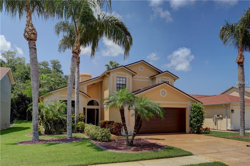 Tampa, FL 33635