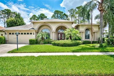 Hudson Single Family Home For Sale: 11235 Brambleleaf Way