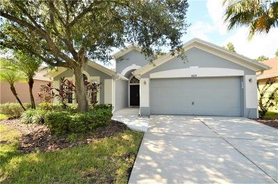 Tampa Single Family Home For Sale: 11820 Easthampton Drive
