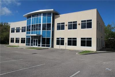 Palm Harbor Commercial For Sale: 35686 Us Highway 19 N